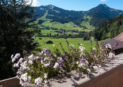 Schweiz_baa-13